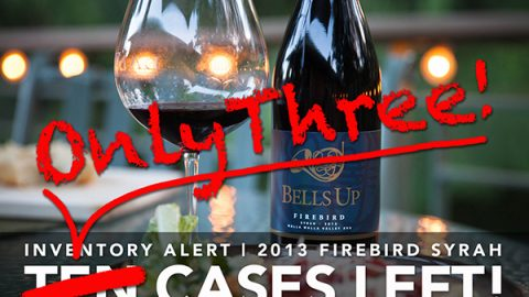 Just 3 Cases of 2013 Firebird Syrah Remain!