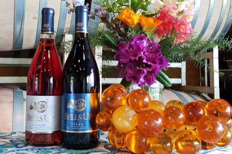 Washington Wine Blog Gives Two New Bells Up Releases High Marks