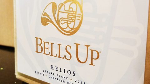 Introducing Helios: Bells Up's Historic, First-Ever Willamette Valley Seyval Blanc