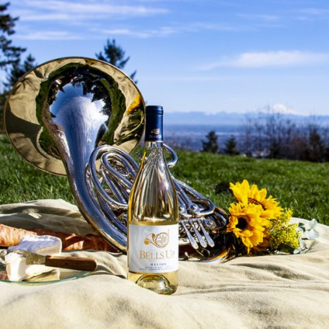 1 Wine Dude Reviews 2018 Helios Estate Seyval Blanc