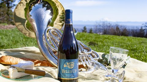 "Wine Reviewer Ellen Landis Says Bells Up's Wines Are ""Striking and Dramatic"""