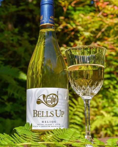 """2018 Helios """"A Glass of Sunshine,"""" says Drink In Nature"""