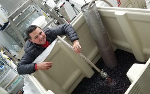 "Winerabble Interviews Winemaker Dave to Find Out ""Why Wine?"""