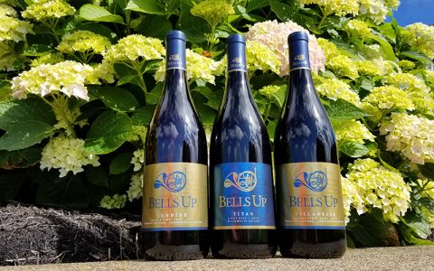 "2017 Bells Up Pinots Have ""Excellent Finesse and Elegance,"" Says Washington Wine Blog"