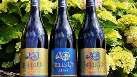 "Bells Up's 2017 Pinot Noirs Reviewed by Fine Wine Writer L.M. Archer: ""Mama like. A lot."""
