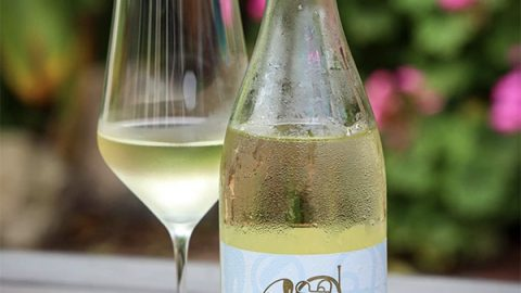 """2020 Rhapsody Pinot Blanc has """"Excellent Depth of Flavor Alongside Intense Energy,"""" says Winery Reflections"""