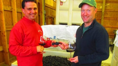For Earth Day Bells Up Winery, Tonnelier Vineyard featured in Corporate Sustainability Blog