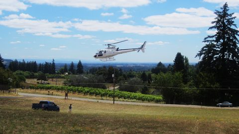 #TBT: That one time Bells Up Winery was in a James Bond movie.*