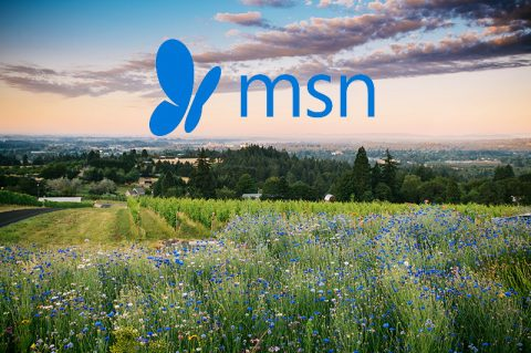 MSN Showcases Willamette Valley, Bells Up as a Crowd-Free Spring Break Destination