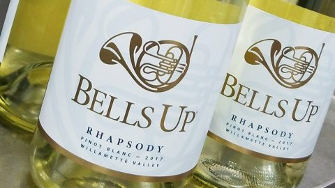 Our Pinot Blanc is back! 2017 Rhapsody is now available.