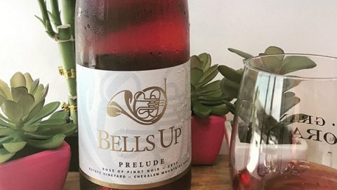 Wino On A Budget Loves Bells Up's 2017 Prelude Estate Rosé