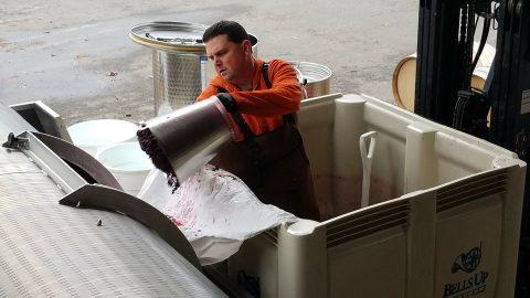 Willamette Valley Wineries Association Features Bells Up Winemaker Dave Specter