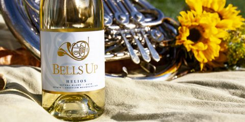 2018 Helios Seyval Blanc Reviewed by Washington Wine Blog