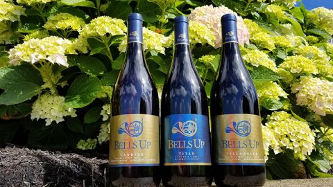 """2017 Bells Up Pinots Have """"Excellent Finesse and Elegance,"""" Says Washington Wine Blog"""
