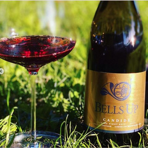 """The Wine Siren Kelly Mitchell Praises 2017 Candide as a """"Distinctly Beautiful Pinot Noir"""""""
