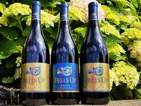 """Bells Up's 2017 Pinot Noirs Reviewed by Fine Wine Writer L.M. Archer: """"Mama like. A lot."""""""