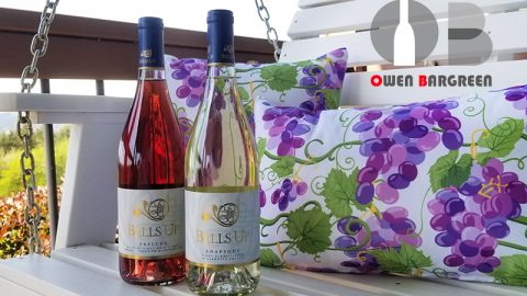 Owen Bargreen Praises 2020 Prelude Rosé, 2020 Rhapsody Pinot Blanc
