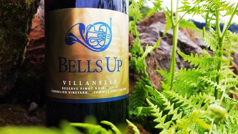 """2018 Tonnelier Vineyard Reserve Is """"Perhaps [Our] Most Impressive Pinot Noir,"""" Says Great Northwest Wine"""