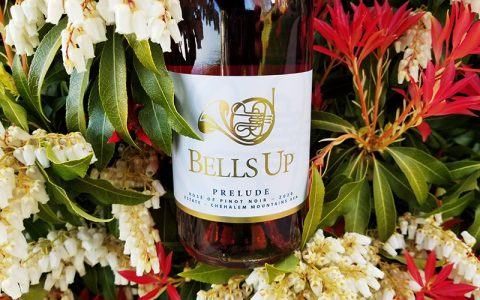"""2020 Estate Prelude Rosé and 2019 Firebird Syrah Rated """"Excellent"""" by Reviewer Frederic Koeppel"""