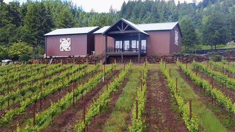 Taste Newberg Features Bells Up Wine Tasting Experience in New Video