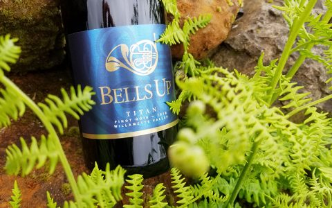 Wine Enthusiast Awards Bells Up's 2018 Titan Pinot Noir a 90-Point Rating