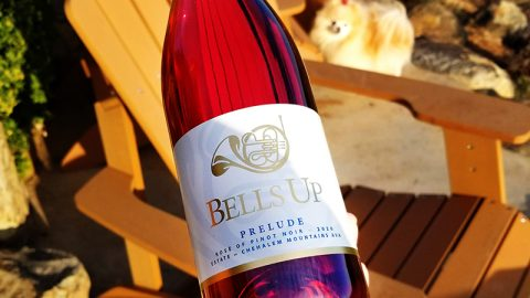 """2020 Prelude Estate Is A """"Gorgeously Rosy Rosé,"""" Says Great Northwest Wine"""