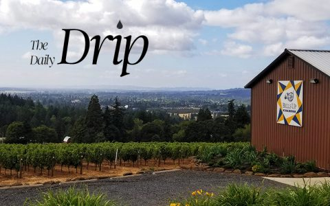 """The Daily Drip Lauds Bells Up As """"The Perfect Introduction To Willamette Valley"""""""